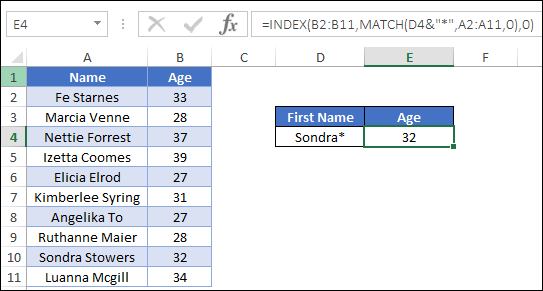 lookup wildcards index match enter data